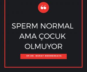 Sperm normal ama çocuk olmuyor Murat Mermerkaya