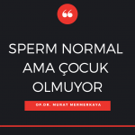 Sperm DNA hasarı Murat Mermerkaya
